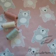 Wendy Velcí medvědi na růžové